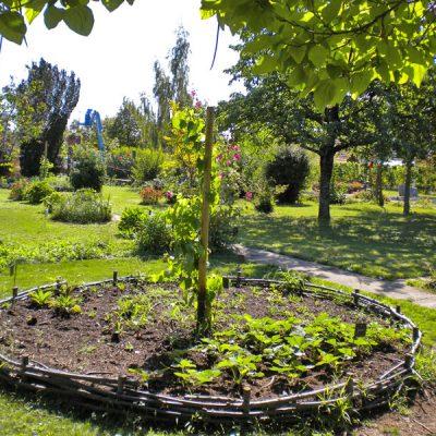 jardin-medieval-kintzheim-01